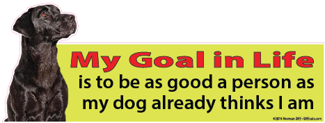 A DEEcal with a dog that reads 'My Goal in Life is to be as good a person as my dog already thinks I am.'