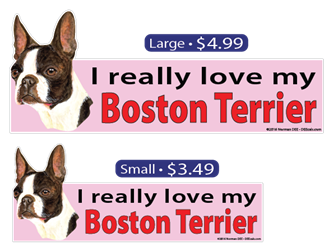 I Love My Boston Terrier BostonTerrier, BostonTerriers, Boston, Terrier, Terriers, dog, dogs, love, my
