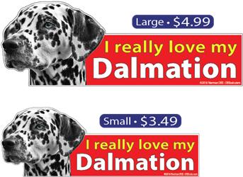 I Love My Dalmation dalmation, dalmations, dog, dogs, love, my