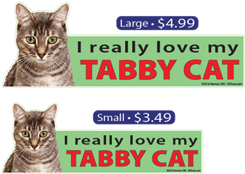 I Love My Gray Tabby Cat tabbycat, tabbycats, tabby, cat, cats, love, my