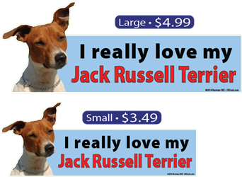 I Love My Jack Russell Terrier jack russell terrier, jack, russell, terrier, jackrussellterrier, jack russell, russell terrier, dog, dogs, love, my